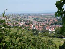 Bilder - Best of 2001 - deidesheim