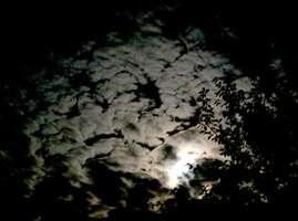 Bilder - Best of 2001 - himmel-nachtwolken