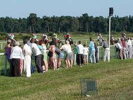 Bilder - Best of 2001 - pferderennen-kibitzen