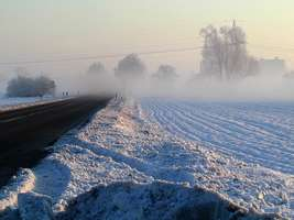 Bilder - Best of 2002 - strasse-nebel-schnee