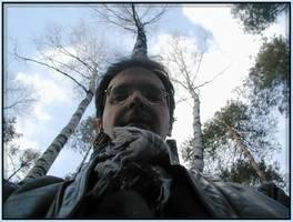 Bilder - Best of 2004 - sponge-in-deep-forest