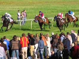 Bilder - Best of 2005 - pferderennen-im-mai-1
