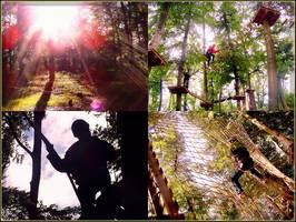 Bilder - Best of 2009 - kletterwald-viernheim