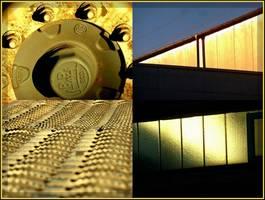 Bilder - Best of 2010 - evening-walk