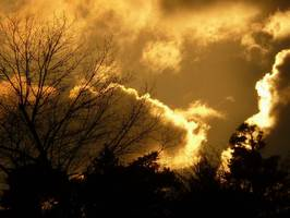 Bilder - Best of 2010 - golden-clouds