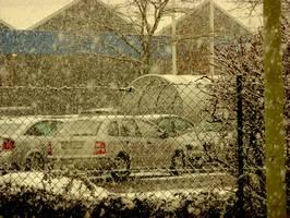 Bilder - Best of 2010 - snow-flurry