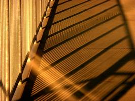 Bilder - Best of 2012 - golden-stripes