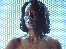 Bilder - Best of 2013 - star-trek-voyager-belanna-torres