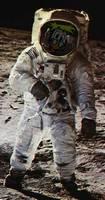 Bilder - Fakes - astronaut-duesentrieb