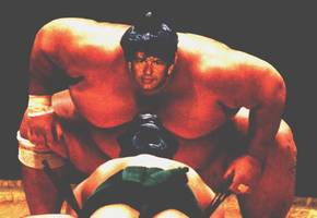 Bilder - Fakes - uwe-sumo-ringer