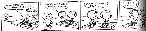 Comics - Charles Schulz: Peanuts
