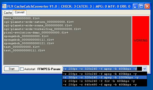 FLV-Cache-Catch-Converter - Ein wohlgefüllter Konvertierungsspooler
