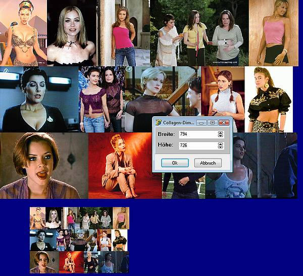 Delphi-Tutorials - MediaPanelyzer - Creating a collage out of the media panels