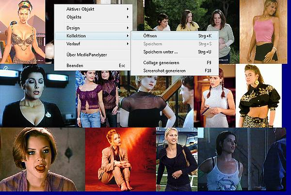 Delphi-Tutorials - MediaPanelyzer - Popup-menu width collage functions for the media panels