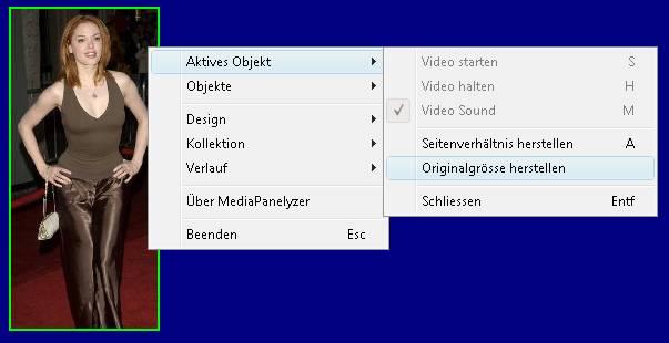 Delphi-Tutorials - MediaPanelyzer - Popup-Menu of the 'TMainF'-Form