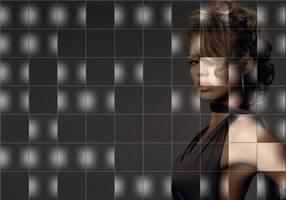 Delphi-Tutorials - Pic-of-Pictures (Mosaik-Collage) - Demo: Schwarz-Weiss-Pixelblöcke in minderer Qualität