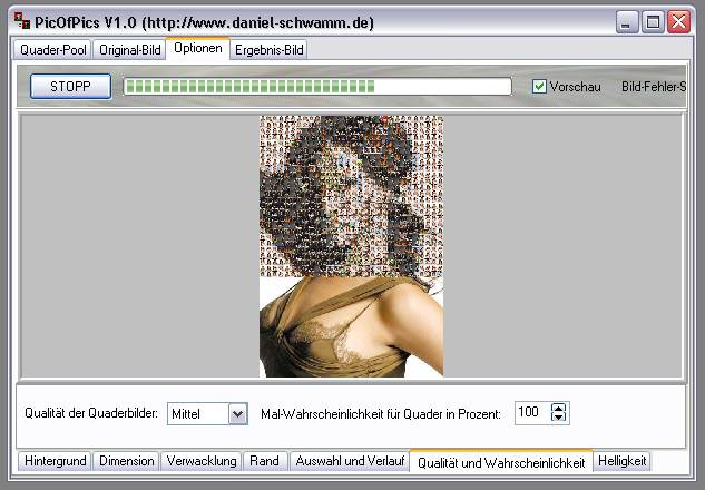 Delphi-Tutorials - Pic-of-Pictures (Mosaik-Collage) - Optionen: Vorschau-Bild
