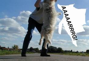 It's a dogs life - Tarzan - Draussen 08
