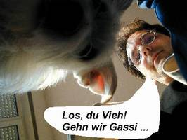 It's a dogs life - Tarzan - Morgen des Grauens 03