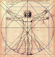 Leben - Mensch von Leonardo da Vinci