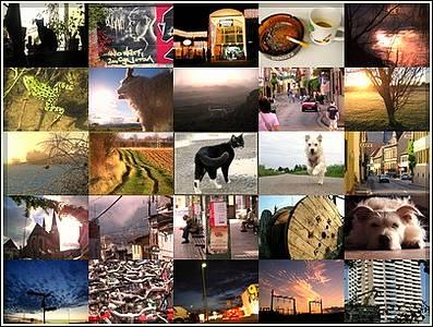 News - Die besten selbstgeschossenen Bilder der letzten Jahren im Überblick